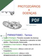 20 49 21 Slidesprotozoarios2