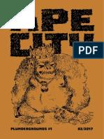 Pg1b Ape City