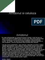 Amidonul si celuloza