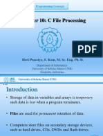 10. C File Processings