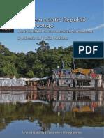 UNEP_DRC_PCEA_EN.pdf