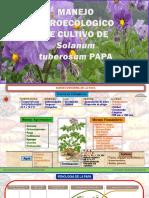 Papa 150103000652 Conversion Gate01