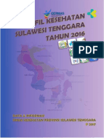 Profil Kesehatan Sultra 2016