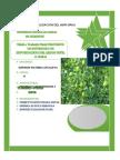 Monografia Final de Proyecto de Inversion Pulica (1)