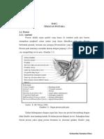 karsinoma prostat-2.pdf