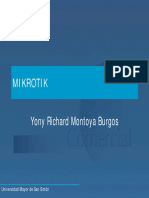 Curso Mikrotik.pdf