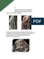Petropictos de Ciruelo