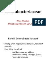 Enterobakteria