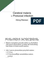 Bms166 Slide Cerebral Malaria Protozoal Infection