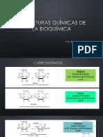Estructuras Quimicas de La Bioquimica