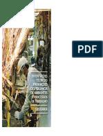 Orientações Técnicas Para Ações de Vigilância de Ambientes e Processos de Trabalho
