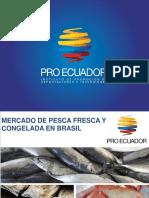 Mercado de Pesca Fresca y Congelada a Brasil 19 Oct.