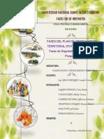FASES DEL OT.pdf