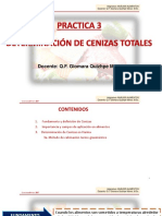 Practica n.3, Determinacion de Cenizas Totales