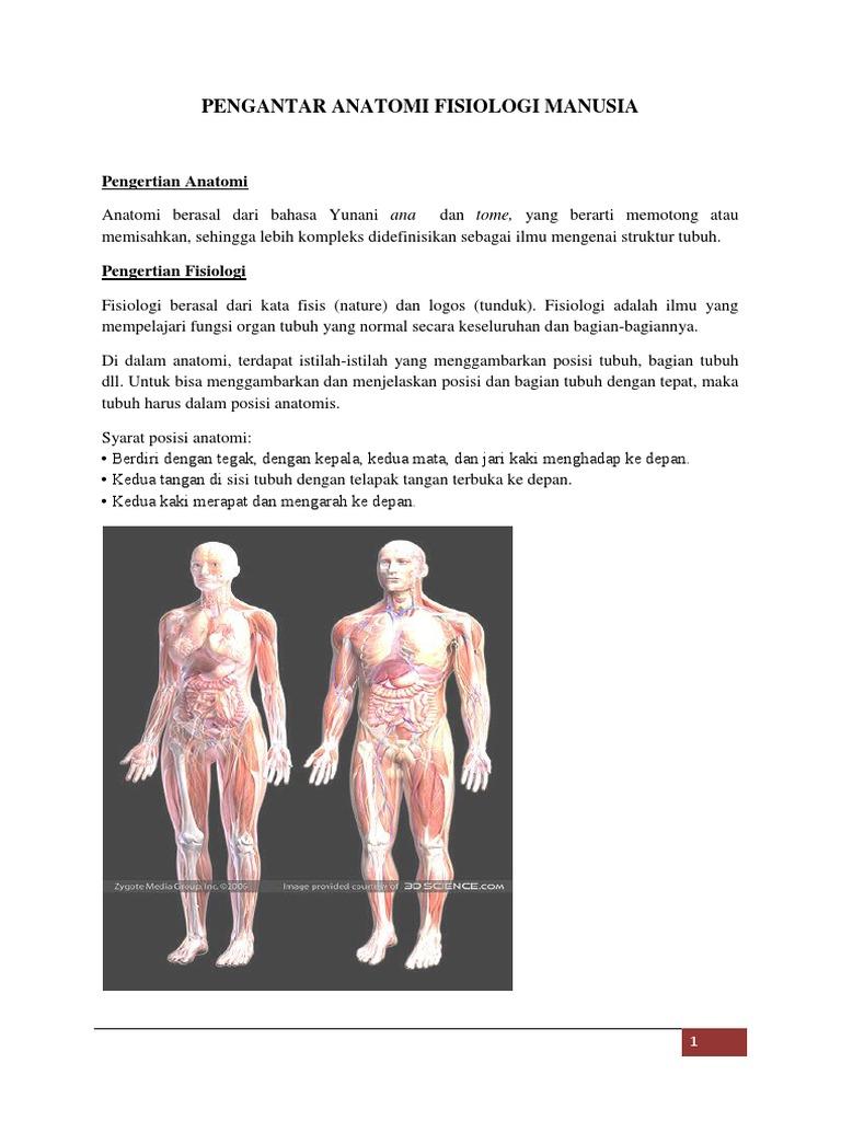 Pengantar Anatomi Fisiologi Manusia Kul 1