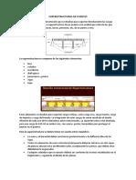 Superestructuras de Puentes