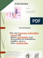 Testosterona y