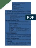 Informe de Estructuracion Urbana de Un Terreno