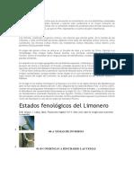 La Citricultura Peruana