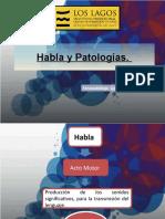 Habla y Patologías
