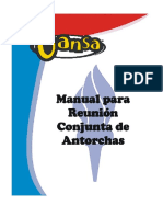 214656143 Manual Antorchas