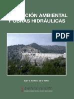 EVALUACION AMBIENTAL Y OBRAS HIDRAULICAS.pdf