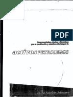 Activos petroleros.pdf
