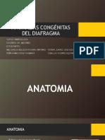 Anomalías Congénitas Del Diafragma