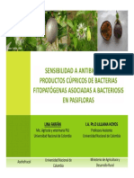 Bacteriosis en Maracuya