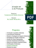 9 Auditoria Ambiental