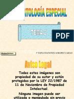 TEMAFE2P99W(1)