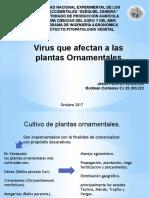 Virus Que Afectan a Las Plantas Ornamentales