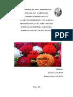 Trabajo Virus de Plantas Ornamentales
