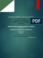 metabolismo de los carbohidratos y lipidos