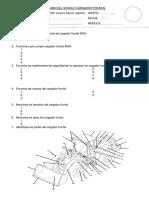 Examen Del Modulo Cargador Frontal