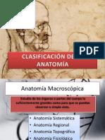 clasificacindelaanatoma-121129222512-phpapp01