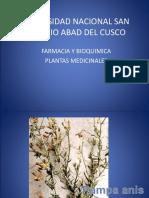 plantas medicinales.ppt
