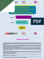 PCA Pillcocancha 2017