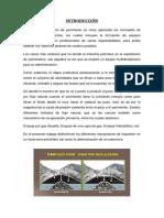 Gerenciamiento de Reservorios - Gas en Solución