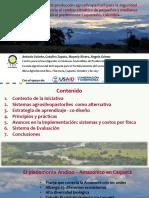 Sistemas Agrosilvopastoriles Caqueta CIPAV Mesa Agroforestal ASOHECA 7102017