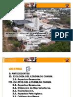biologiaycultivodellenguado-111028222334-phpapp02