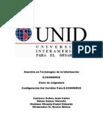Proyecto Final de Comercio Electronico UNID 2010