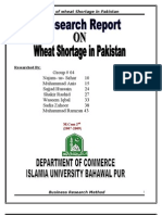 Research Report on Shortage of Wheat in Pakistan