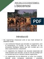 Estructura_ecosistemes_Biocenosi