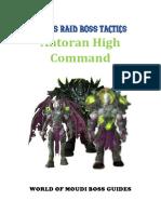 Antoran High Command Boss Tactics - Patreon Member