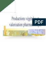 Productions Vegetales Et Valorisation Pharmaceutique
