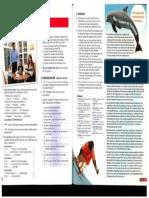 New English File UI Coursebook