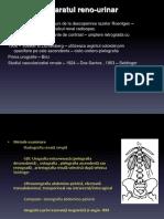 LP 10 15.05.2015 Curs 8 Examen Imagistic Al AP.reno-urinar.p.60 Xerox