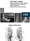 The Foot and Ankle