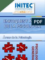 1enfoques y Áreas de La Psicología